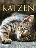Katzen: Verhalten . Pflege und Haltung . Rassen Claire Bessant