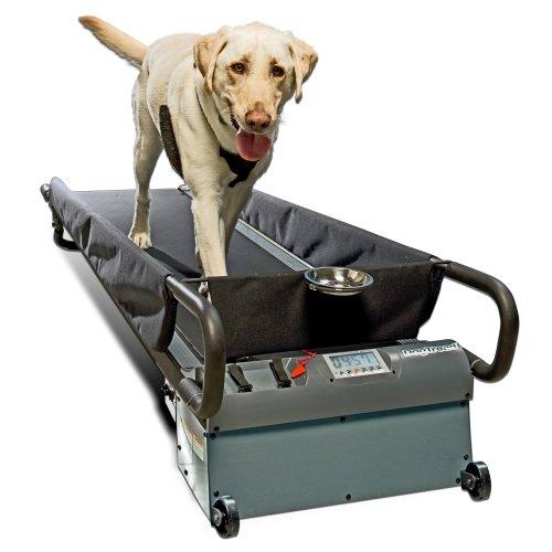 PetZen DogTread Dog Treadmill