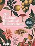 Vintage Botanical Illustration: Copyright-Free Images for Artists, Designers and Plant Lovers: 1
