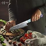 Hajegato Damastmesser Küchenmesser Einzigartiges Griff Kochmesser Profi Messer Japanisches Messer Vg10 Hohe Qualität 67 Schichten Damaststahl Stahlmesser-ultra Scharfe Messer (Santoku Messer - 7