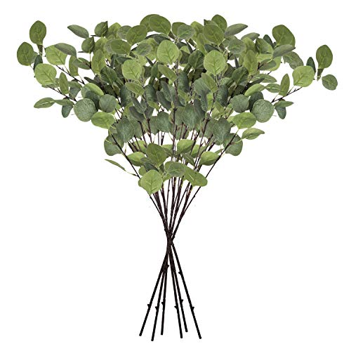 Planta De Eucalipto  marca Royal Imports