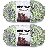 Bernat Blanket Big Ball Yarn (2-Pack) Lilac Leaf 161110-10240