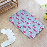 Eastery Fußmatte Bodenmatte Matte Teppich Schutzmatten Unterlegmatten Türvorleger Sauberlaufmatte Für Innen Einfacher Stil Oder Außen Flamingo (Color : Colour, Size : Size)