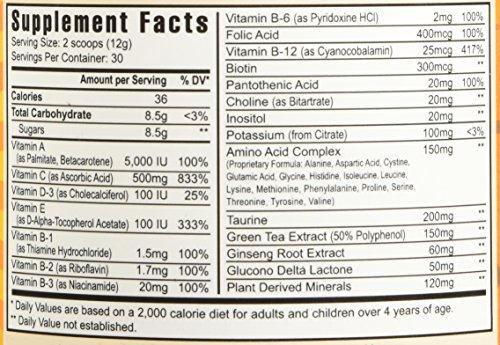 Rebound FX Citrus Powder 360g