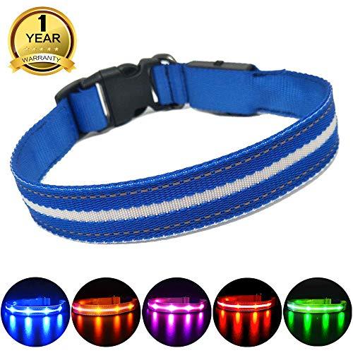 MASBRILL Leuchthalsband für Hunde Aufladbar LED Hundehalsband 100% Wasserdicht Blinkende Lichter mit USB (L, 60cm, Blau)