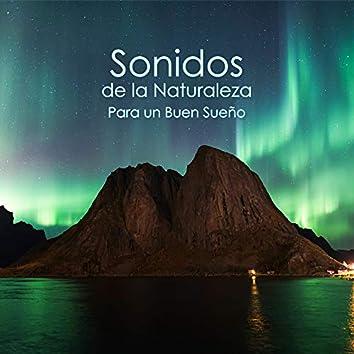 Sonidos de la Naturaleza Para un Buen Sueño: Pájaros Melodía, Gotas de Agua, Relajación de la Naturaleza