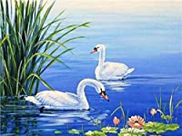 DIY デジタル絵画子供家の装飾イラスト白い白鳥