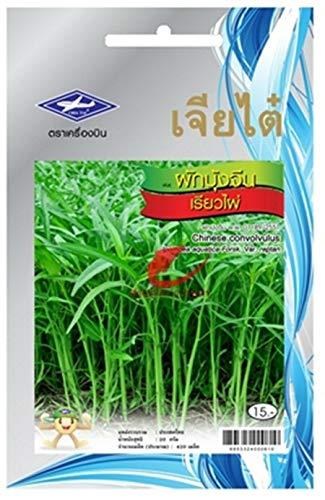 PLAT FIRM Germination Les graines: 2 Packs: 420 Graines Thai Jardin Potager Plantes Bio Glory Convolvulus Chia Tai