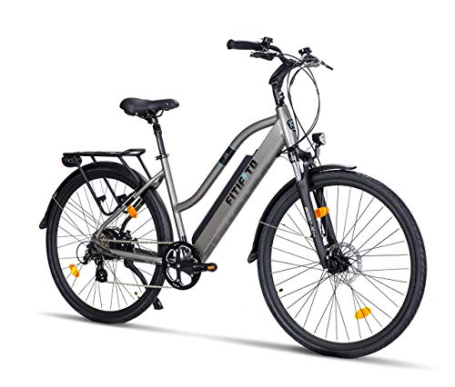 Fitifito CT28 Zoll Elektrofahrrad Citybike E-Bike Pedelec, 48V 250W Cassette Heckmotor, 13Ah 624Wh Samsung Akku, 8 Gang Shimano Schaltung, Front Rear hyraulische Bremsen (Grau)