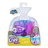 Little Live Pets Lil' Dippers – Seaqueen – Lil' Dippers de Little Live Pets con Efecto «Wow» al desempaquetar en Agua y Alimentar interactivamente.