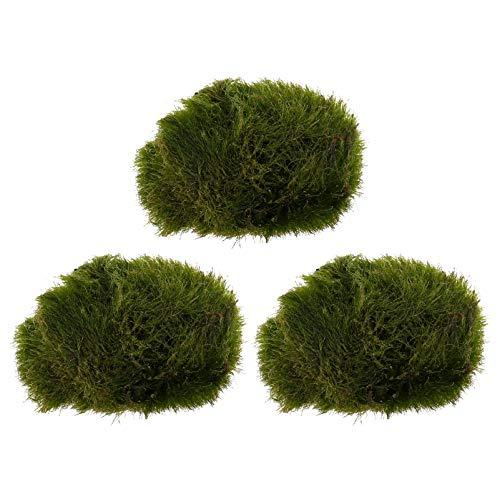 TEHAUX Moss Ball Decor Acquario Verde Muschio Pallina Decorativa Secca Verde Muschio Pallina Decor per Acquario/Fish Tank