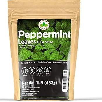 Peppermint Tea 1LB  16Oz  Cut & Sifted | STRONG & FRESH | Non-irradiated 200+ Cups Peppermint Loose Leaf Herbal Tea  Mentha Piperita  | Mint Tea | Bulk 1 lb Large Resealable Bag