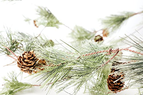 20 best branch garland christmas for 2021