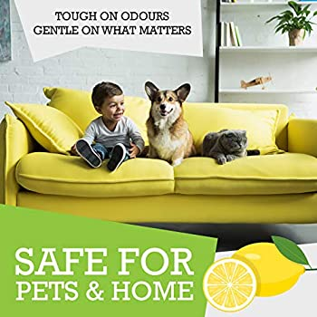 Mad Lemon Pet Odor Eliminator and Neutralizer - Industrial Strength 8oz Concentrate - Makes 1 Gallon - Great for Cat & Dog Odors, Urine, Carpet, Dead Rodent Odor, Mouse, Rat, Sewer, Garbage, Trash Can