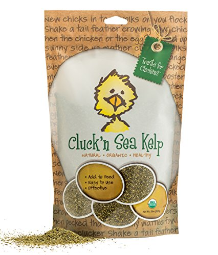 Treats For Chickens Certified Organic Cluck'N Sea Kelp, 2-Pound, Vitamin Supplement