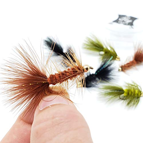 Woolly Bugger Trout Fly Fishing Streamer Assortment (Assortment)
