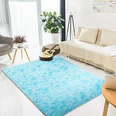 Amazon - Save 60%: LORSEX Super Comfy Indoor Fluffy Rug Plush Velvet Area Rugs Carpet f…