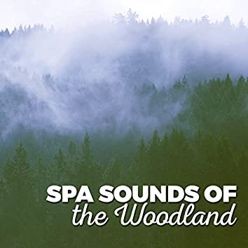 Spa Sounds of the Woodland