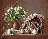 GenericBrands Kits de Pintura de Bricolaje por números Flores y Setas Pintura al óleo acrílica Dibujo sobre Lienzo con Pinceles Regalos de decoración navideña - 16 * 20 Pulgadas sin Marco