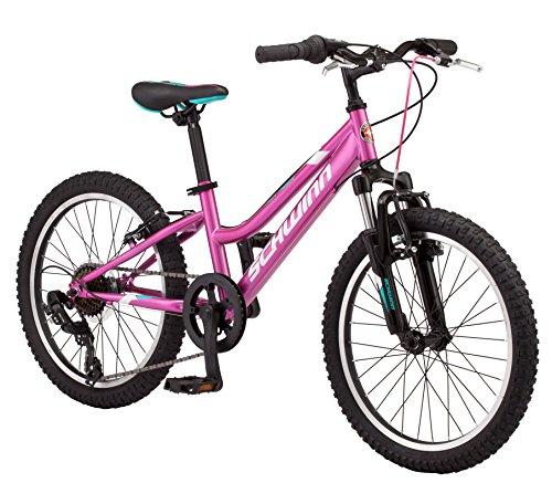 Schwinn High Timber Youth/Adult Mountain Bike, Steel Frame, 24-Inch Wheels, 21-Speed, Silver