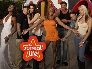 The Surreal Life Season 5
