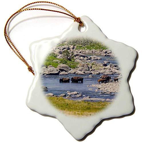 3dRose USA, Wyoming, Yellowstone NP. Buffalo Herd Fording Stream - Ornaments (ORN_333171_1)