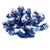 IMIKEYA Coral Artificial Ornament Coral Planta Ornament Artificial Decoración para Acuario Paisaje Submarino Decoración (Azul)