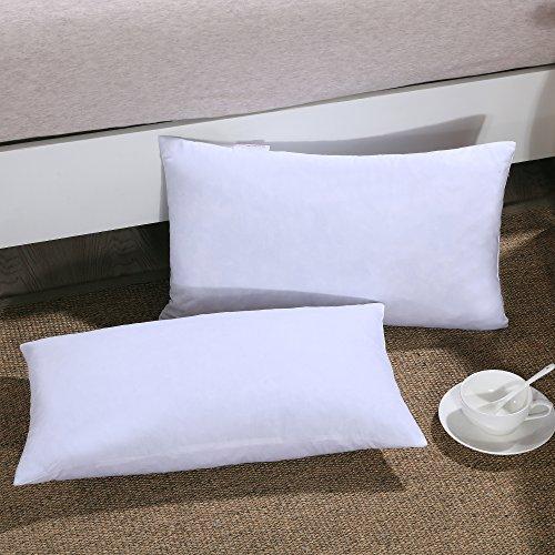 13 x 21 down pillow insert - 1