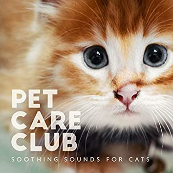 Pet Care Club - Soothing Sounds for Cats, Relaxing Music for Kittens, Stress Relief Therapy, Calm Your Canine Companion