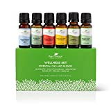 Plant Therapy Wellness Essential Oil Gift Set 10 mL (1/3 oz) Each Set Includes: Germ Fighter, Immune-Aid, Respir-Aid, Blues Buster, Eucalyptus and Oregano