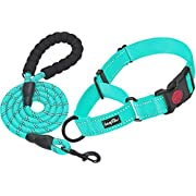 haapaw 2 Packs Martingale Dog Collar with Quick Release Buckle Reflective Dog Training Collars for Small Medium Large Dogs