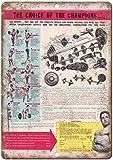 Todghrt Joe Weider Juego de Mancuernas para Levantamiento de Pesas con Cartel de Metal de Aspecto Retro, 30,5 x 40,6 cm, Letrero de Lata de Aluminio