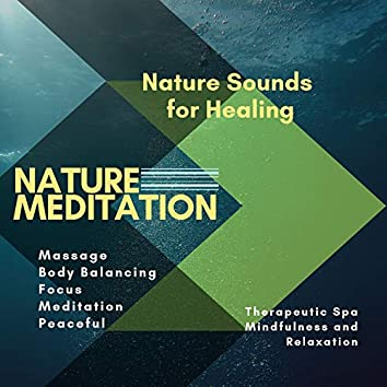 Nature Meditation (Nature Sounds For Healing, Massage, Body Balancing, Focus, Meditation, Peaceful, Therapeutic Spa, Mindfulness And Relaxation)