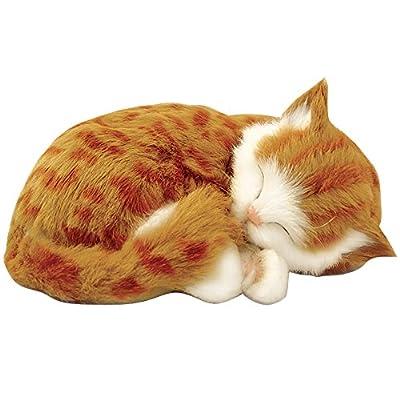 Perfect Petzzz Orange Tabby Animated Pet