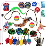Yangbaga 25 Cat Toys Assortments, 7 Real Fur Rattle Mice, Interactive Wand, Crinkle Balls and Springs for Cats, Puppy, Kitty, Kitten