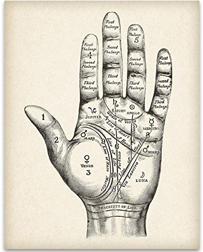 Vintage Palm Reading Chart - 11x14 Unframed Art Print Poster - Great Occult, Witch, Creepy, Spooky,...