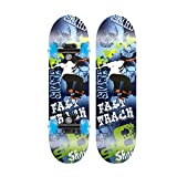 Beginner Skateboard Skateboards, 24x6 Inches /31x8 Inches Complete Skate Board Maple Wood Skateboard Deck with Double Kick Concave Design for Boys Girls Teens,Skateboards for Kids2-6/6-15 Year Old