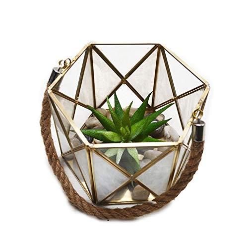 Terrariums Zeshoekige vergulde metalen geometrische vorm helder glas scharnierende bovenste deksel bloem kamer voor Succulente luchtplanten bruiloft salontafel balkon vensterbank miniatuur bonsai container