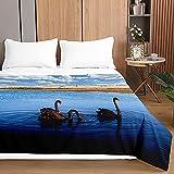 Tagesdecken Bettüberwurf, Chickwin Weißer Schwan Drucken Sommer Tagesdecke mit Prägemuster Wohndecke aus Mikrofaser Bettdecke für Einzelbett Doppelbett oder Kinder (Schwarzer Schwan,100x150cm)