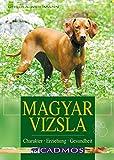 Magyar Vizsla: Charakter, Erziehung, Gesundheit (Cadmos Hundebuch) - Ursula Weidmann