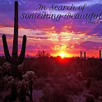 In Search of Something Beautiful