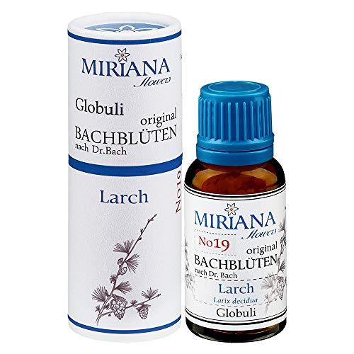 MirianaFlowers Larch 20g Bachblüten Globuli