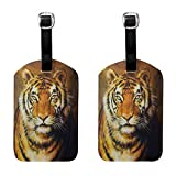 Tiger Lady Luggage tag Oil Painting Style Big Cat Purposeful Eyes Carnivore Bengal