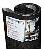 WALKINGBELTS Walking Belts LLC - NTL179157 NT T6.5S Treadmill Running Belt Sand Blast + Free 1oz Lube
