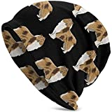 Adulto de Punto Beanie Rough Collie Dog Valentine Actualización Divertida Hip Hop Jerseys para Adultos Warm Knit Ski Skull Cap Beanie Cap para Hombres Mujeres