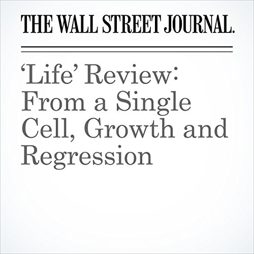 'Life' Review: From a Single Cell, Growth and Regression copertina