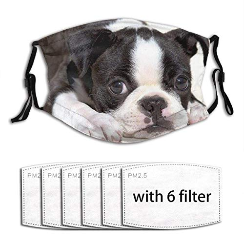 AngelDOU Black and White Boston Terrier Unisex Reusable and Dustproof Mouth Covering with Fliters