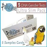 5 Carte Sessaggio Molecolare per Pappagalli Analisis del DNA a partire da piume, uovo e sangre. Lovebirds, pappagalli inseparabili, Cockatoos, africano grigio, parrocchetti (+ 300 Psittacines)