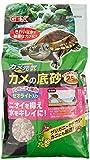 ミシシッピニオイガメの特徴と飼育方法【初心者向け】 - ミシシッピニオイガメの特徴と飼育方法【初心者向け】