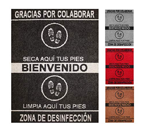 Felpudo desinfectante Calzado - Alfombra Limpia Zapatos para la Entrada, moqueta higienizante (Negro, 68_x_90_cm)